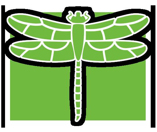 Logo de Eclat Féminin