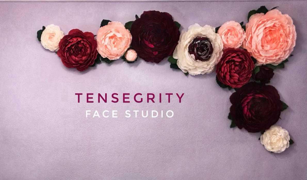 Logo de Tensegrity Face Studio